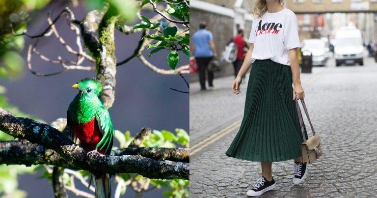 color de moda verde quetzal
