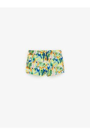 Zara Bebé Shorts - Bermuda baño aves