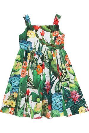 Dolce & Gabbana Exclusive to Mytheresa – Printed cotton poplin dress