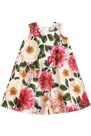 Dolce & Gabbana Vestido De Algodón Interlock Estampado