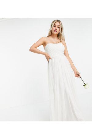 ANAYA Anaya With Love Petite tulle bandeau maxi dress in white